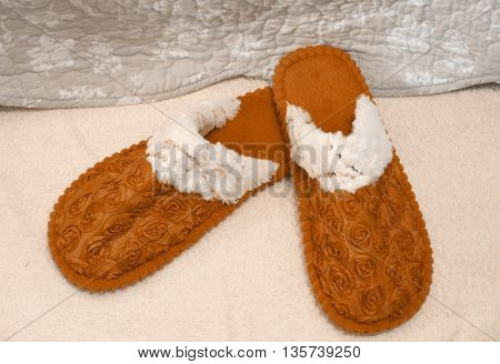 brown slippers on carpet
