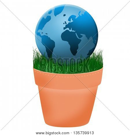 globe placed in the flower pot