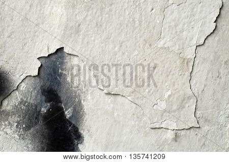 Abstract Textured Black And White Background - Close Up