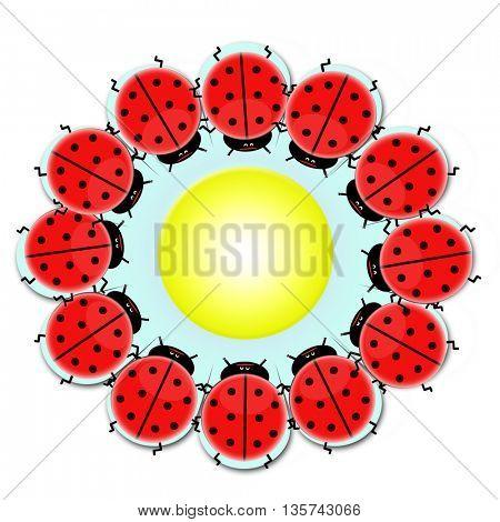 ladybird make flower shape