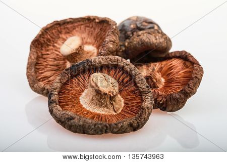 dried mushrooms with white background and inverse image