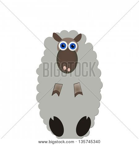 Cute interested sheep isolated on white