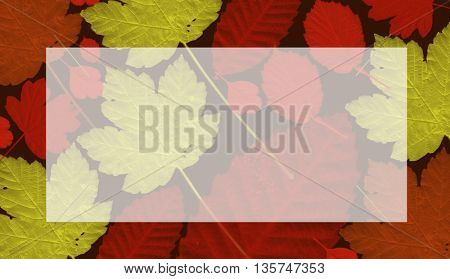 A seamless leaf pattern.with place for text