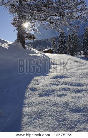 rural landscape in winter snow