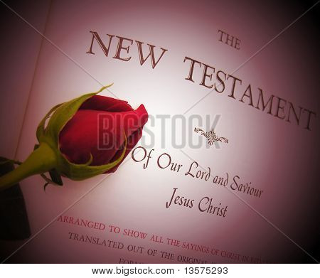 A photo of a rose laying on a bible