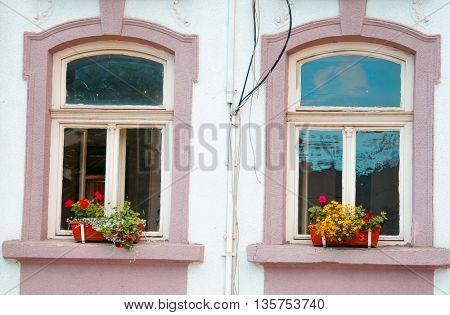 window and flowerbox