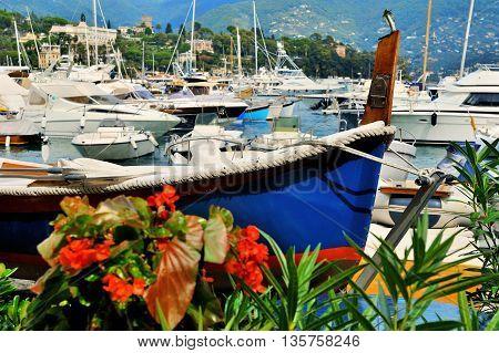fishing boat and yacht in port Santa Margherita Ligure