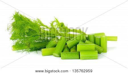 Fresh Fennel Isolated
