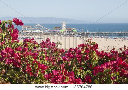 Santa Monica Beach and Pier on a hot summer day