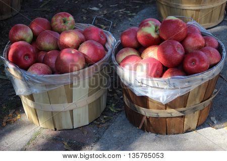 Two bushels of apples fall red farm market