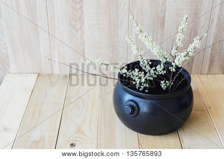 East Asian concept angle view white blooming branch on wooden background