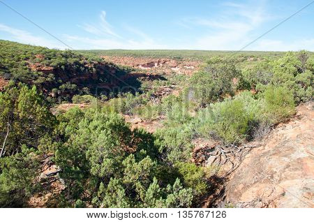 Scenic views of the vegetated gorge at the Z-bend in Kalbarri National Park with red sandstone rock bluffs under a clear blue sky in Kalbarri, Western Australia.