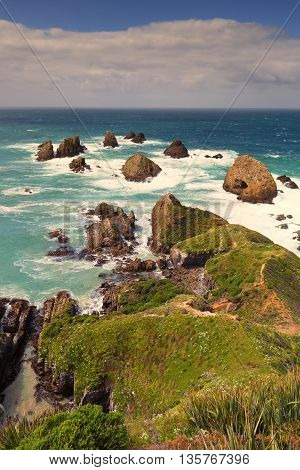 Portrait shot of Nugget Point seascape, New Zealand.