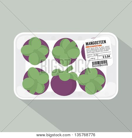 Single Of Mangosteen Pack Vector Illustration. EPS 10
