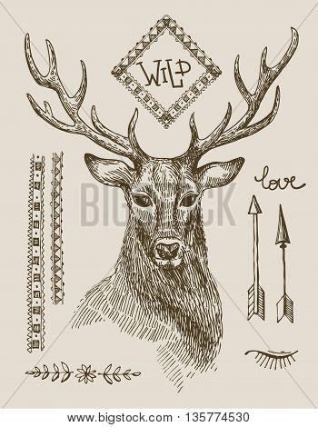 Hand drawn illustration deer. Sketch of deer. Beautiful hand drawn illustration boho style.