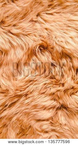 Pattern of background from soft skin texture