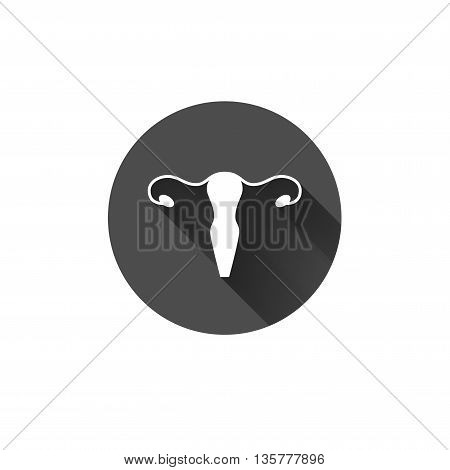 Vector healthy uterus simple flat long shadow icon