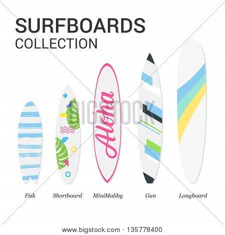 Surfboards types silhouettes. Infographic surfboards. Modern colorful surfboard set on white background. Surfboards design. Surfboards collection. Vector illustration.