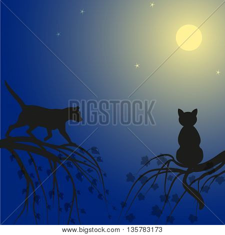 Two cats are watching the night sky on the branches of a tree, vector illustration