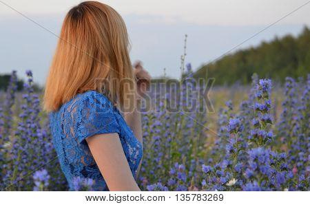 red-haired girl in a dress looks on cornflower blue flowers meadow blue summer