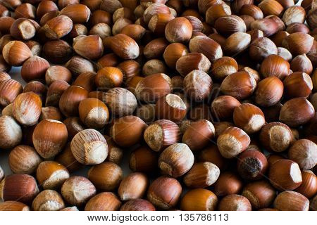 Fresh organic hazelnuts background close-up, food background