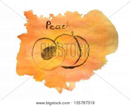 Abstract hand painted watercolor peach for your design