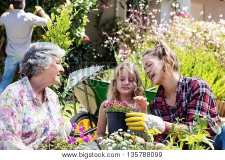 Grandmother, mother and daughter gardening together in garden