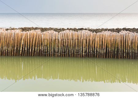 Bamboo fence protect sandbank from sea wave, natural landscape background