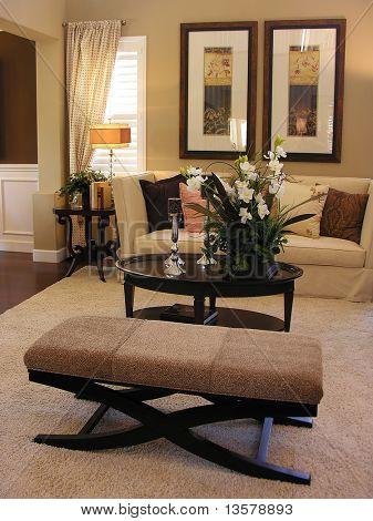 Classy living room interior