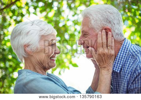 Close-up of romantic couple standing face to face