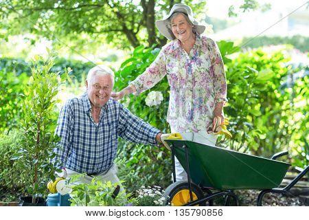 Portrait of senior woman standing by husband with wheelbarrow in garden