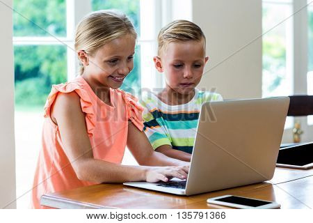 Siblings using laptop while sitting on table at home