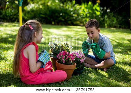 Siblings sitting with flower pots on grass in yard