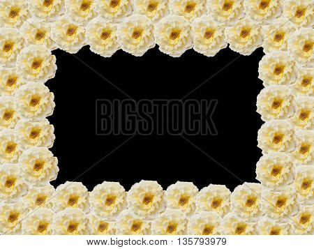 The rectangular frame of buds yellow roses with a black background in