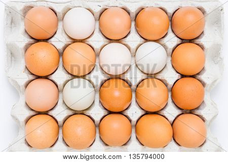 Group Of Eggs In Paper Tray