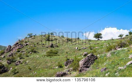 Beautiful Georgian landscape in summer. Georgia Caucasus