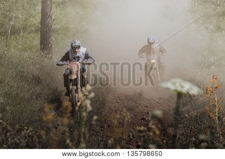 two motorcycle riding on forest dusty trail