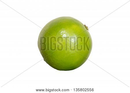Green lime isolated on white background with clipping path
