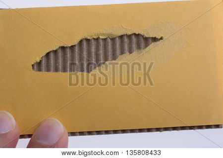 Hand holding Torn Yellow Paper on a white background