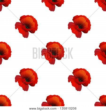 Poppy seamless pattern on white background red