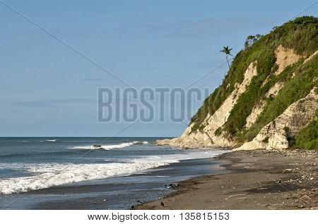 overview of the tropical beach in Ecuador