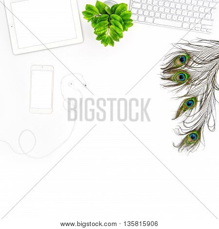 Office desk with keyboard tablet pc screen phone peacock feather green plant. Flat lay. Mock up white background