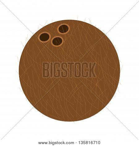 flat design whole coconut icon vector illustration