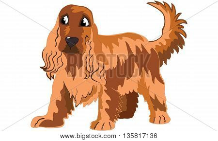 happy english cocker spaniel brown little hound cartoon puppy