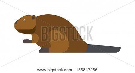 beaver vector illustration.
