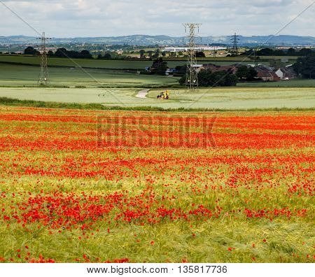 KIRKBY-IN-ASHFIELD ENGLAND - JUNE 24: A yellow tractor and red poppies in farmland. In Kirkby-In-Ashfield Nottinghamshire England. On June 24th 2016.