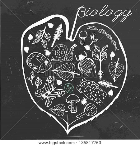 Hand drawn biology pattern on a dark gray textured background. Editable vector illustration. Scientific creative concept. Biology text-book cover idea.