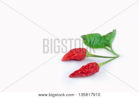 Chili peppers isolated white background. Free space for text.