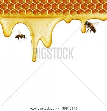 Honeycomb cut in heart form and bees