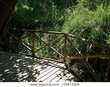 Beautiful small wooden bridge over a stream in a lush green forest